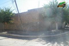 IMGP0515