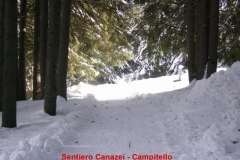 16-sentiero-canazei-campitello