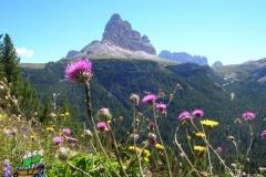 DSCN0308-le-tre-cime-di-Lavaredo-dal-monte-Piana