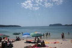 14-pineta-mugoni-spiaggia