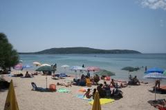 15-pineta-mugoni-spiaggia