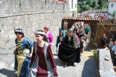 FESTA-POPOLARE-2009-2-246